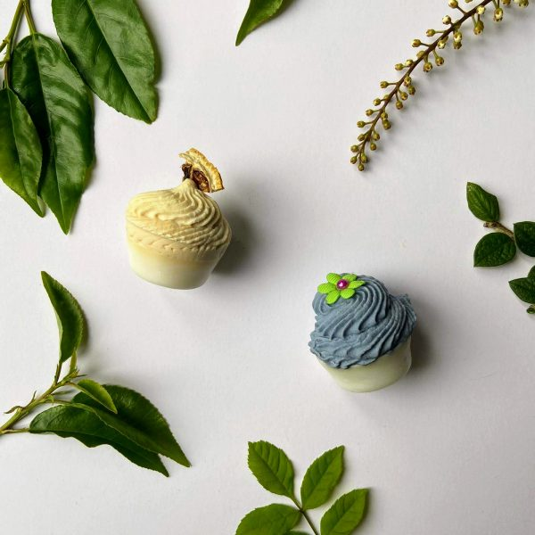 Ecopia Stockport Palm-free mini vegan soaps