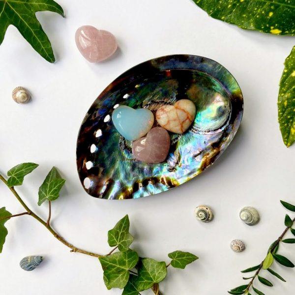 Abalone paua shell soap dish trinket tray